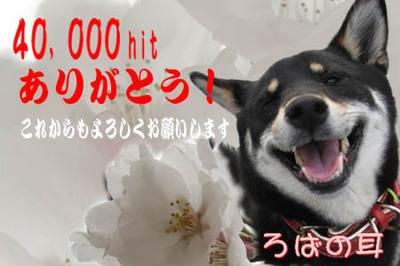40000hit