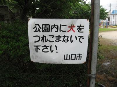 Img_4400