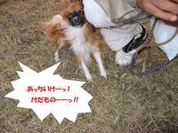 Photo_139