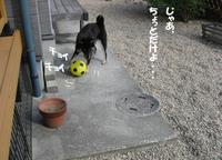 Photo_173