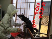 Photo_214