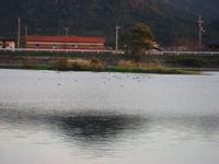 Photo_220
