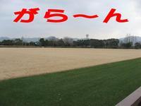 Photo_227