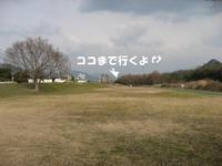 Photo_271
