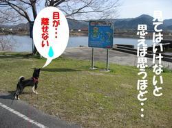 Photo_277