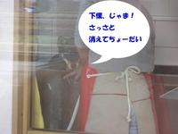 Photo_292