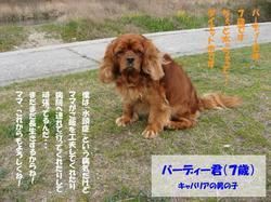 Photo_304