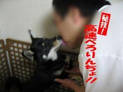 Photo_305