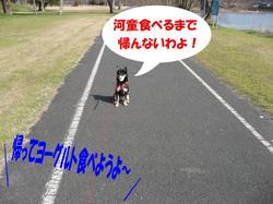 Photo_353