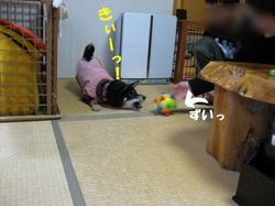 Photo_362