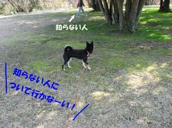 Photo_376
