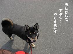 Photo_389