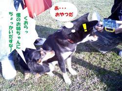 Photo_392