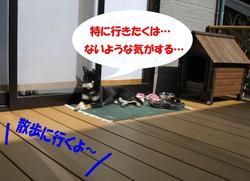 Photo_402