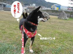 Photo_458