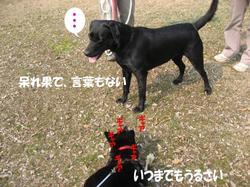 Photo_494