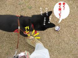 Photo_507