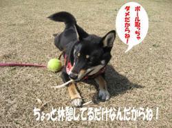 Photo_511