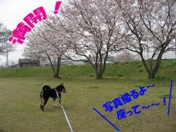 Photo_519