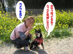 Photo_552