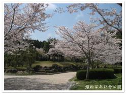 Photo_560