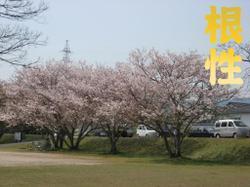 Photo_580