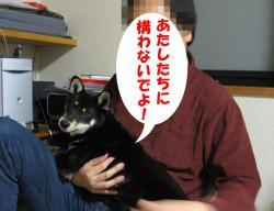 Photo_589