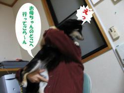 Photo_595