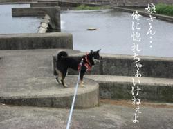Photo_606