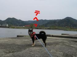 Photo_607
