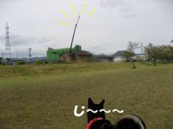 Photo_609