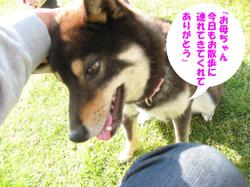 Photo_622