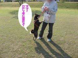 Photo_624