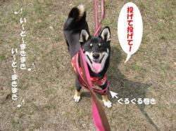 Photo_633