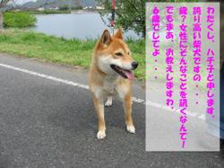 Photo_655