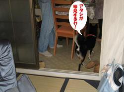 Photo_691