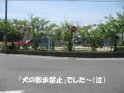 Photo_696