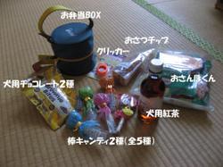 Photo_700