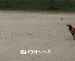 Photo_705