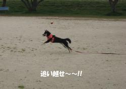 Photo_706
