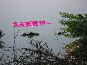 Photo_757