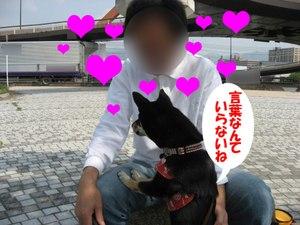 Photo_764