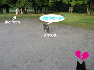Photo_810