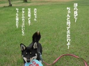 Photo_868
