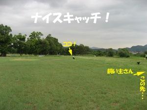Photo_886