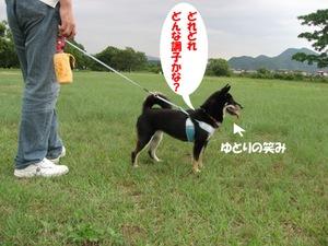 Photo_887
