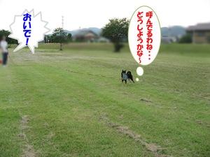 Photo_936