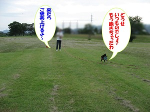 Photo_937