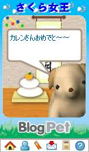 Photo_240